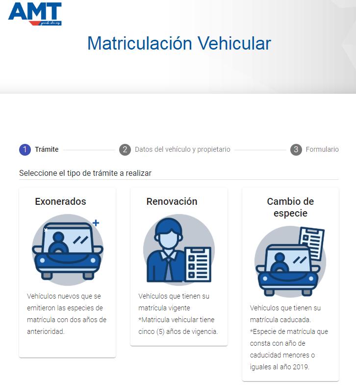 matrícula vehicular en línea, matriculación por internet